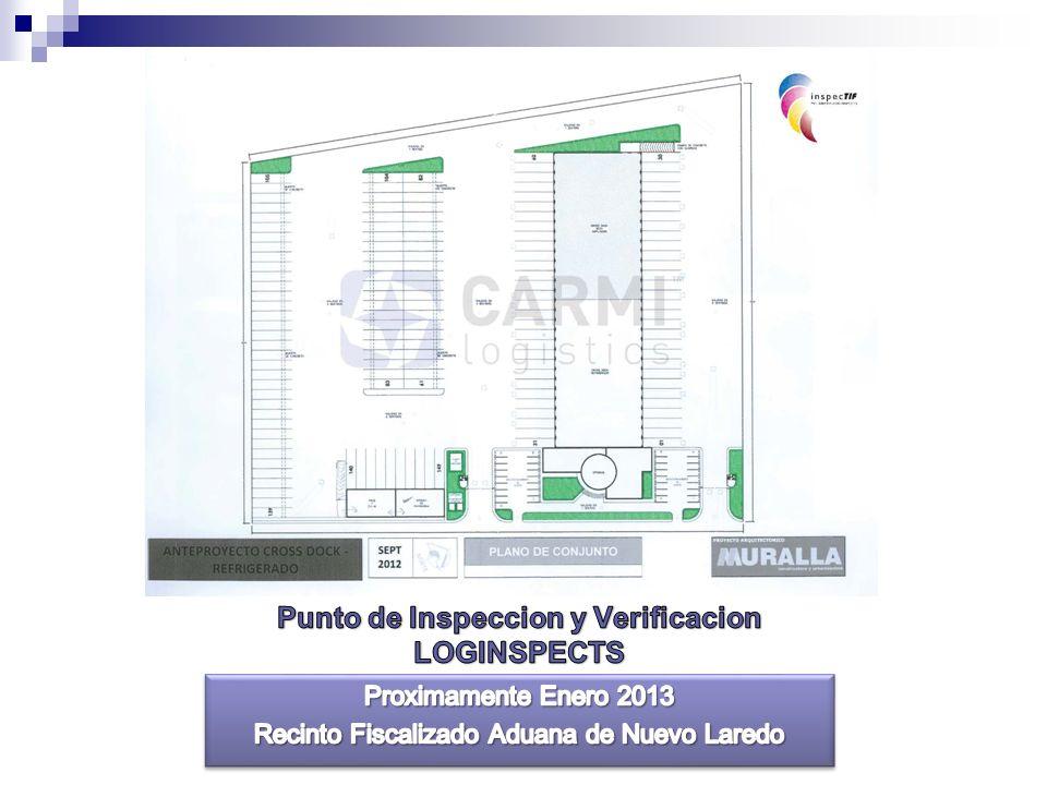 Punto de Inspeccion y Verificacion LOGINSPECTS