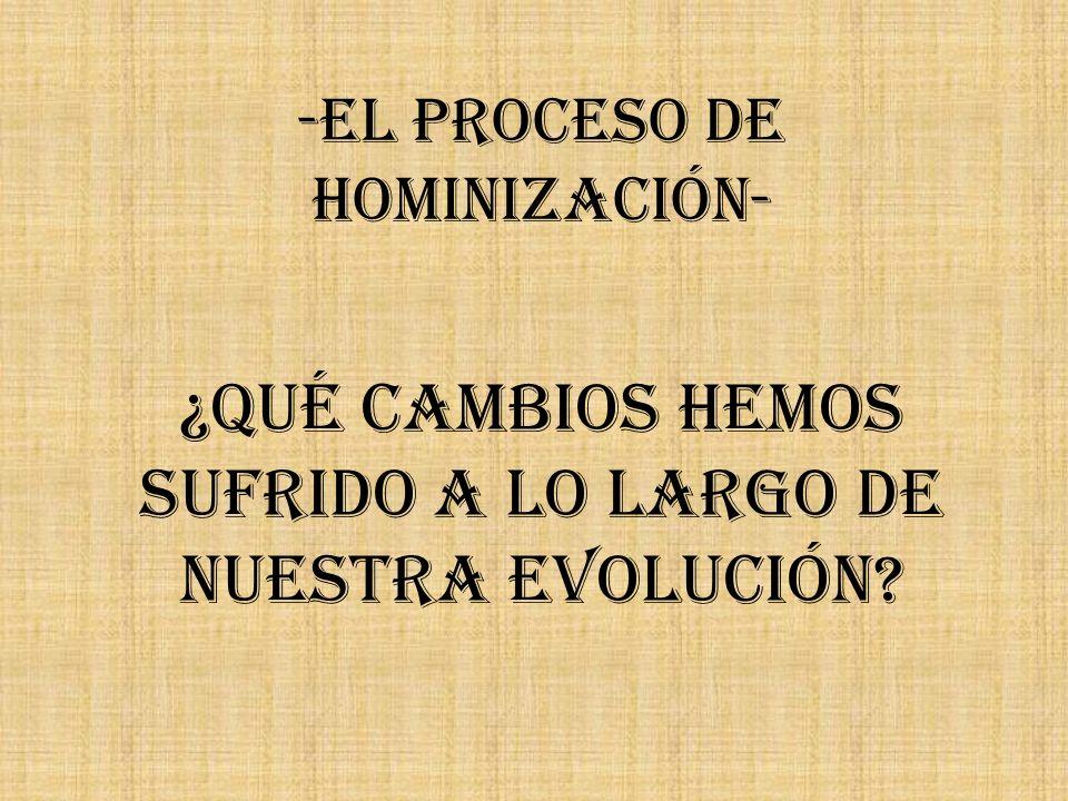 -El Proceso de Hominización-