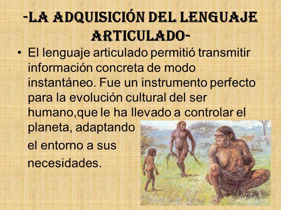 -La adquisición del lenguaje articulado-