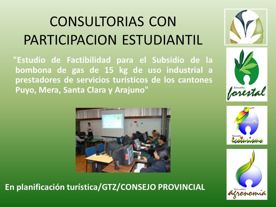 CONSULTORIAS CON PARTICIPACION ESTUDIANTIL