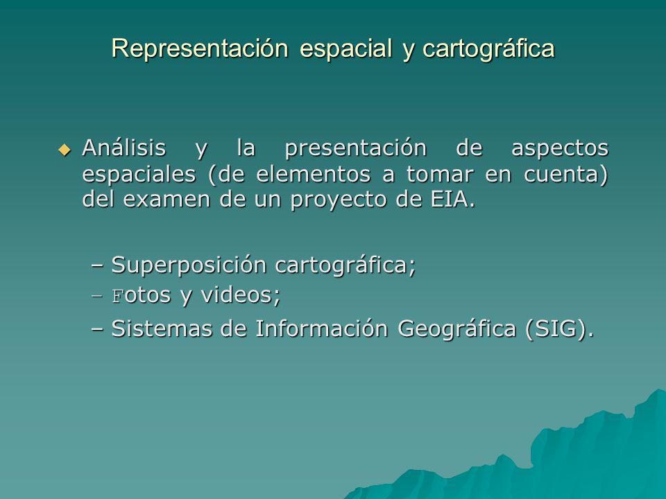 Representación espacial y cartográfica