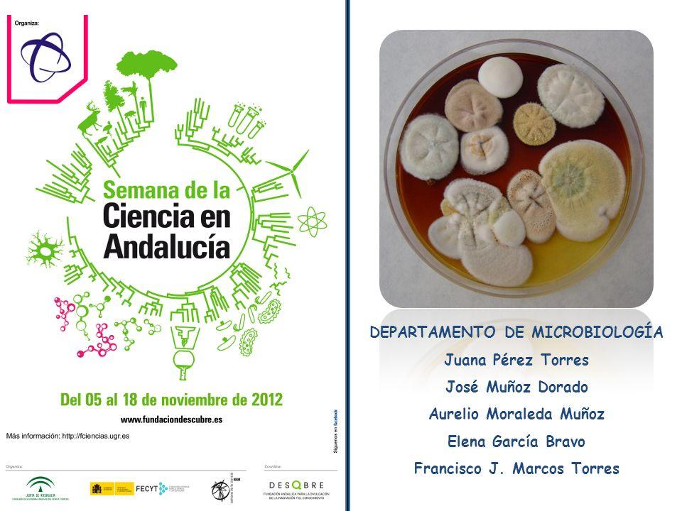 DEPARTAMENTO DE MICROBIOLOGÍA Juana Pérez Torres José Muñoz Dorado