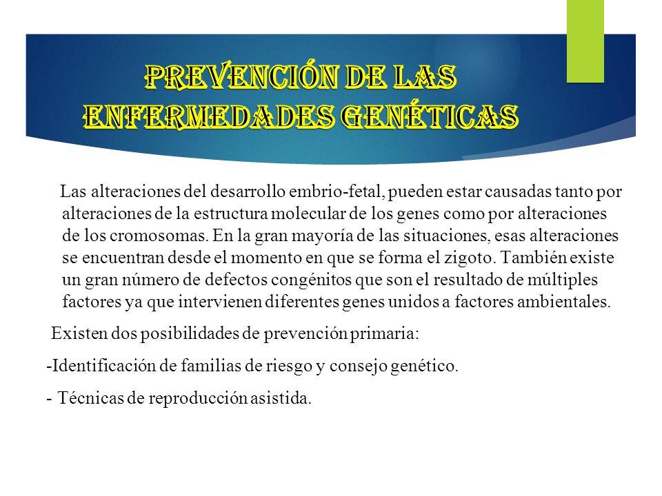 Prevención de las enfermedades genéticas