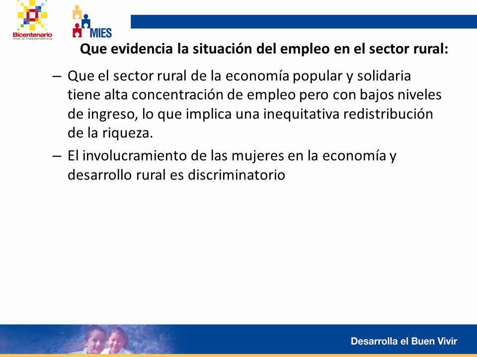 Que evidencia la situación del empleo en el sector rural:
