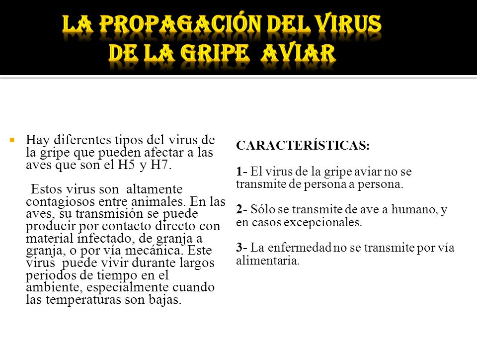 La propagación del virus de la gripe aviar
