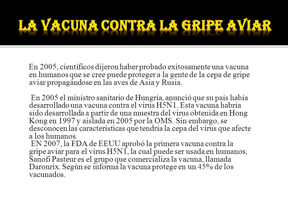 La vacuna contra la gripe aviar