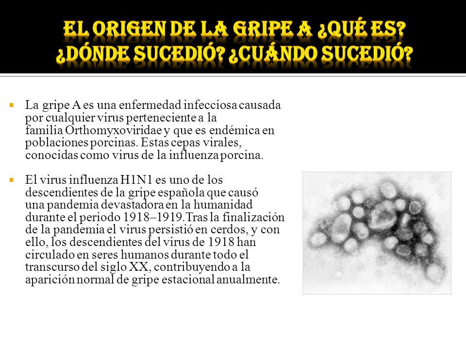El origen de la gripe a ¿Qué es ¿Dónde sucedió ¿Cuándo sucedió