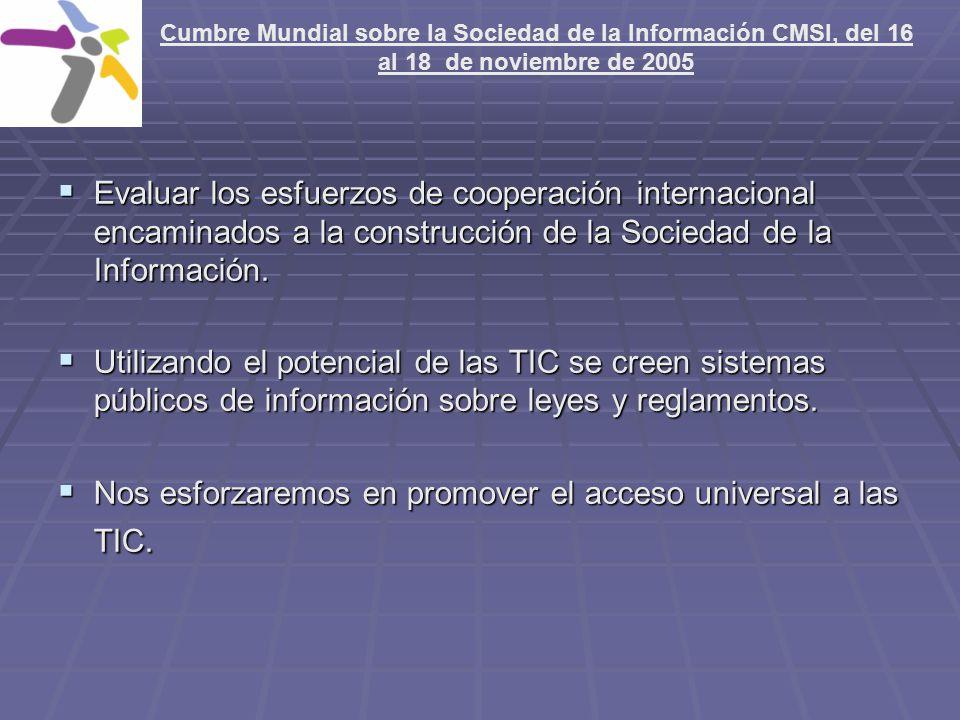 Nos esforzaremos en promover el acceso universal a las TIC.