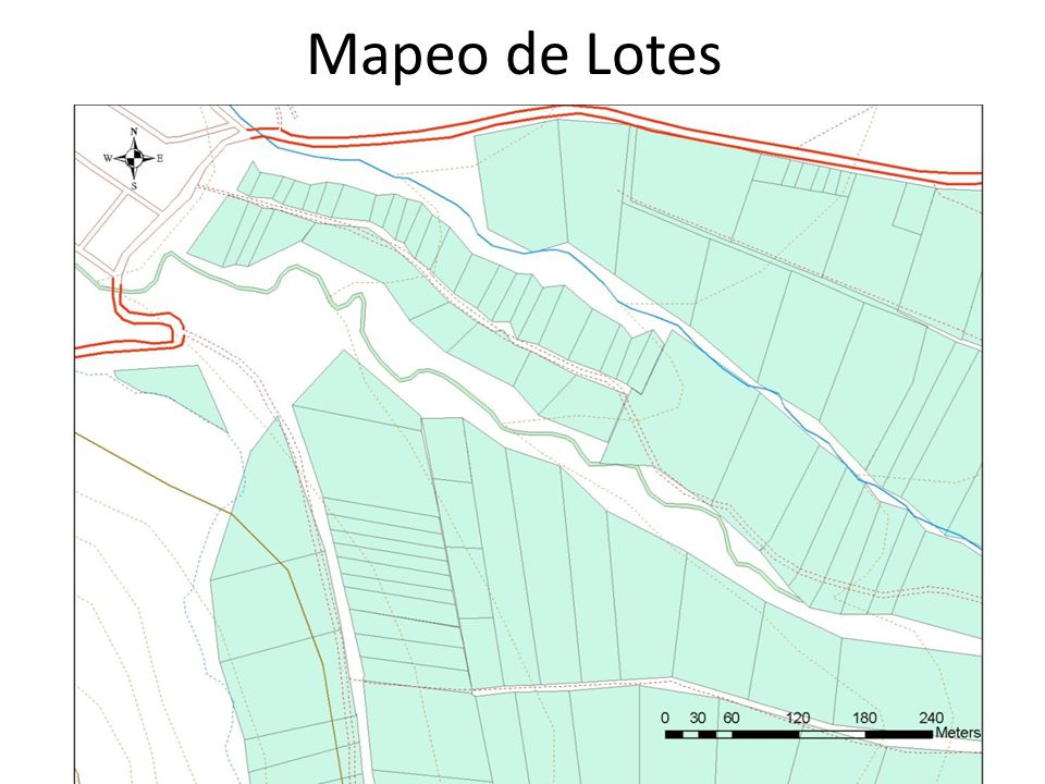 Mapeo de Lotes