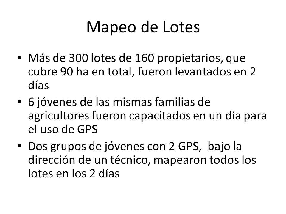 Mapeo de Lotes Más de 300 lotes de 160 propietarios, que cubre 90 ha en total, fueron levantados en 2 días.