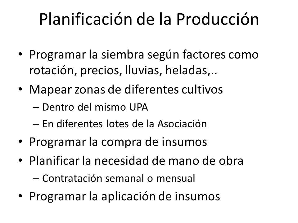 Planificación de la Producción