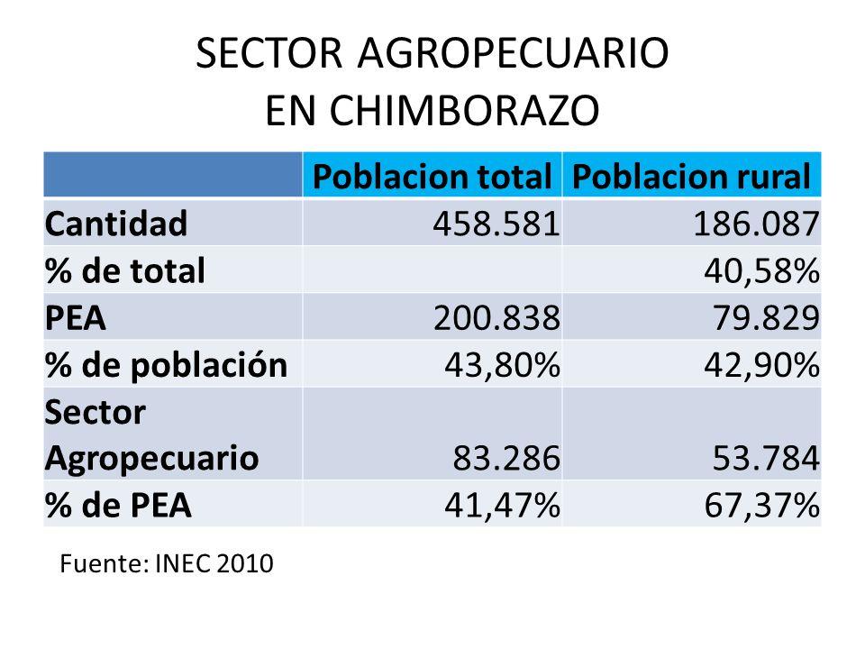 SECTOR AGROPECUARIO EN CHIMBORAZO