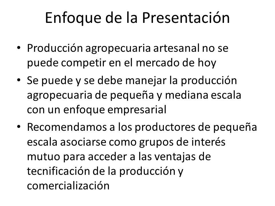 Enfoque de la Presentación