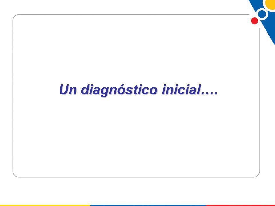 Un diagnóstico inicial….