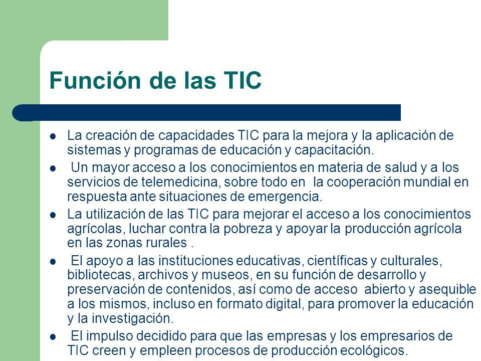 Función de las TIC La creación de capacidades TIC para la mejora y la aplicación de sistemas y programas de educación y capacitación.