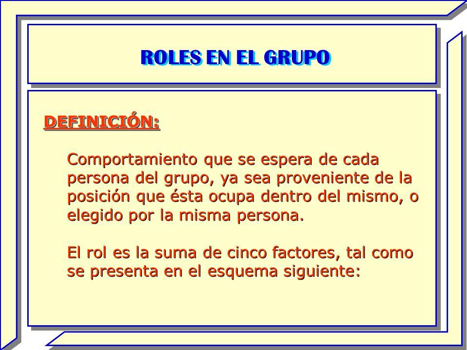 ROLES EN EL GRUPO DEFINICIÓN: