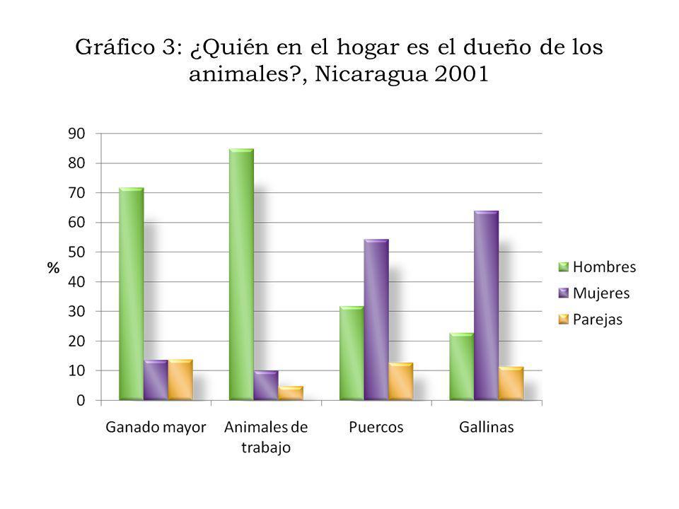 Gráfico 3: ¿Quién en el hogar es el dueño de los animales