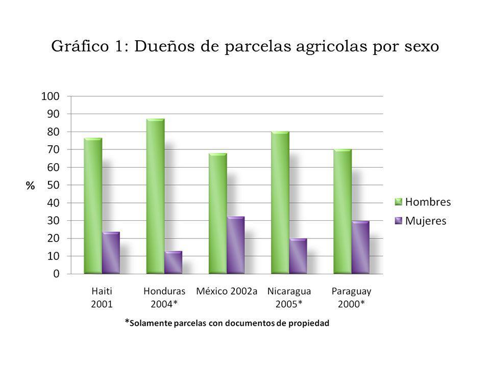Gráfico 1: Dueños de parcelas agricolas por sexo