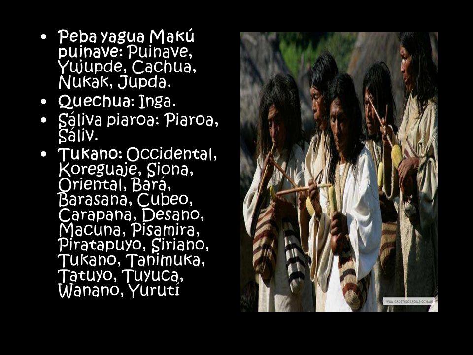 Peba yagua Makú puinave: Puinave, Yujupde, Cachua, Nukak, Jupda.
