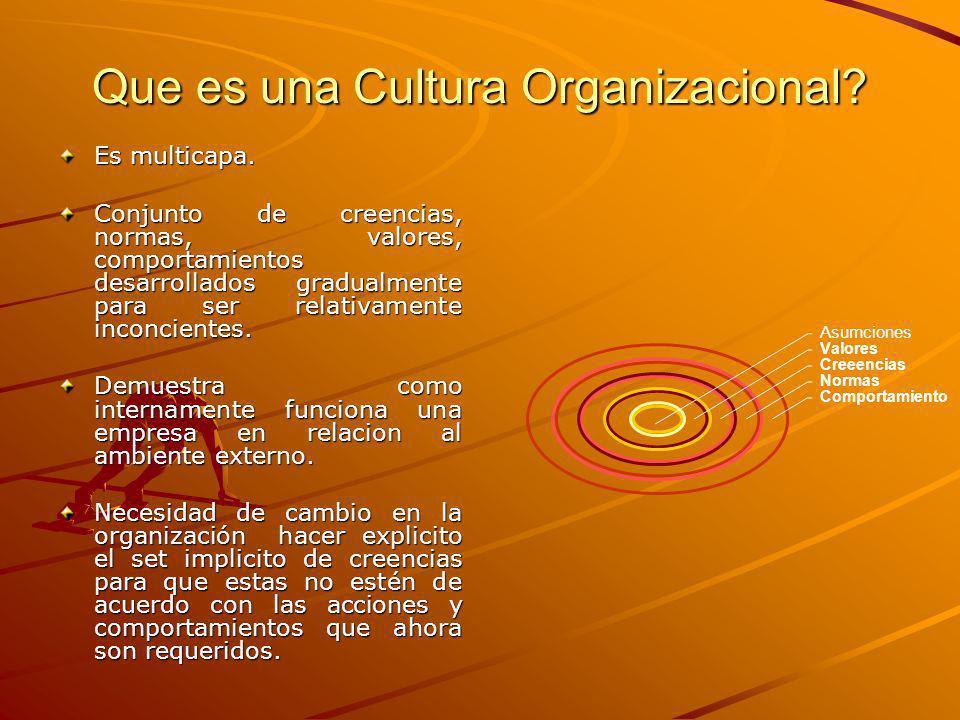 Que es una Cultura Organizacional