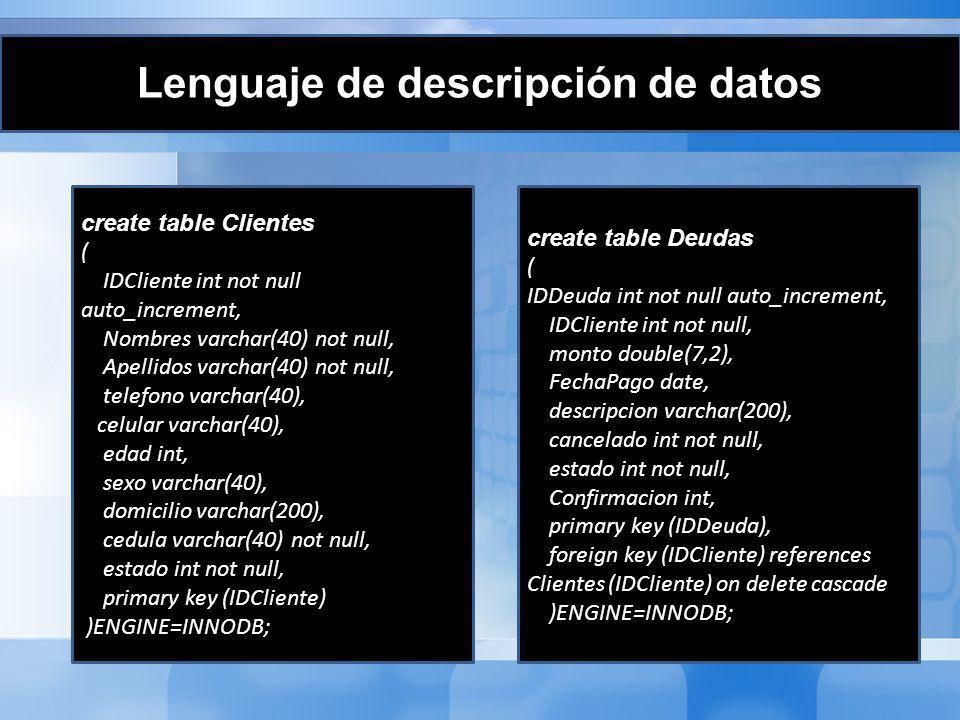 Lenguaje de descripción de datos