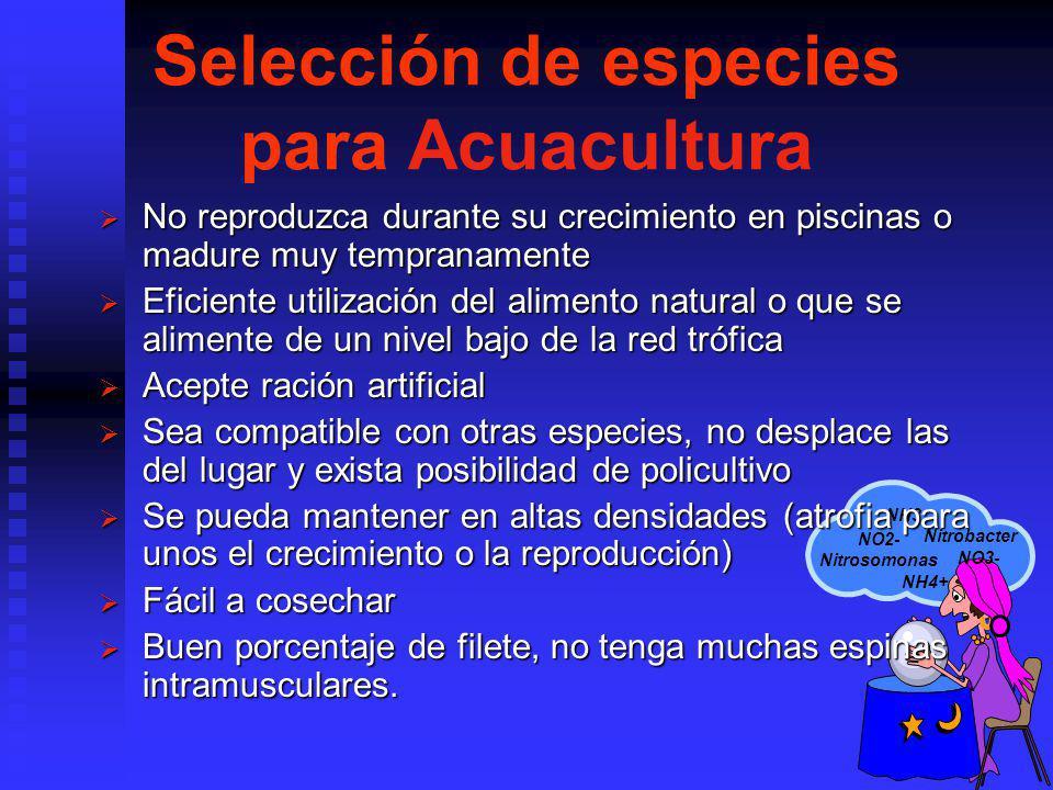 Selección de especies para Acuacultura