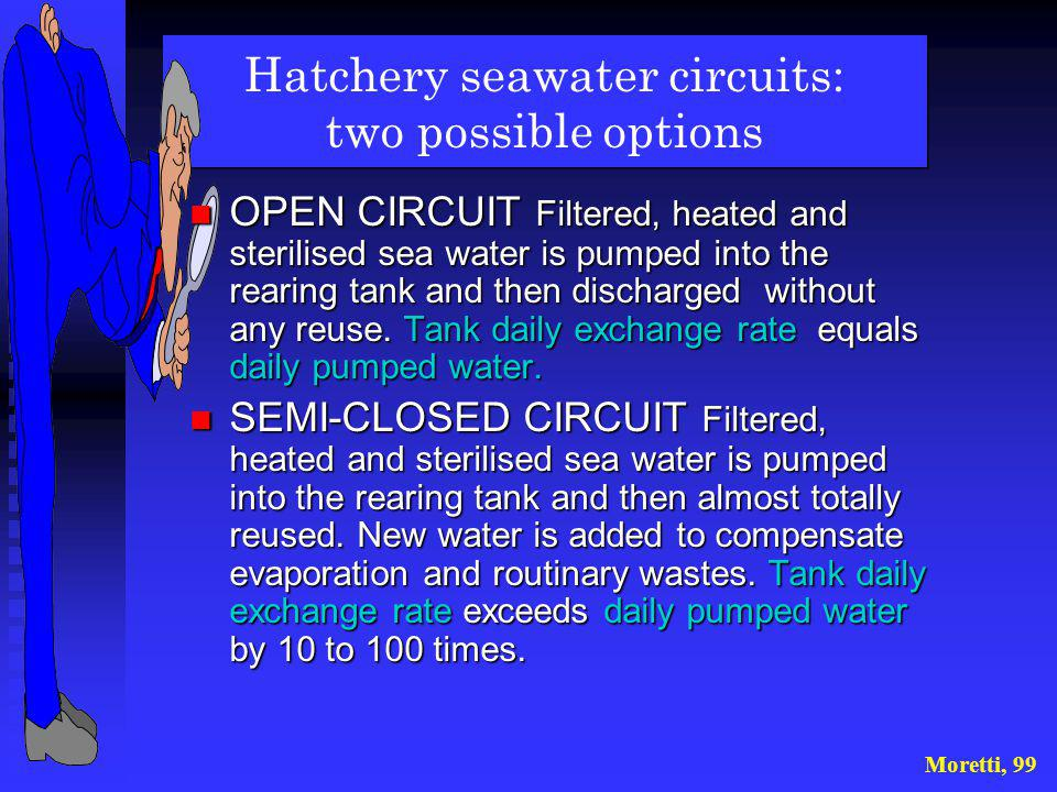 Hatchery seawater circuits: two possible options