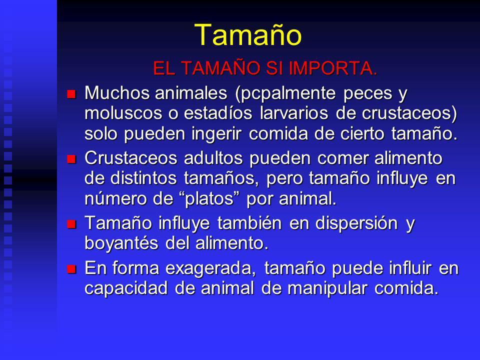 Tamaño EL TAMAÑO SI IMPORTA.