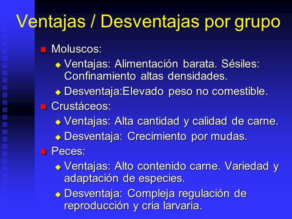 Ventajas / Desventajas por grupo