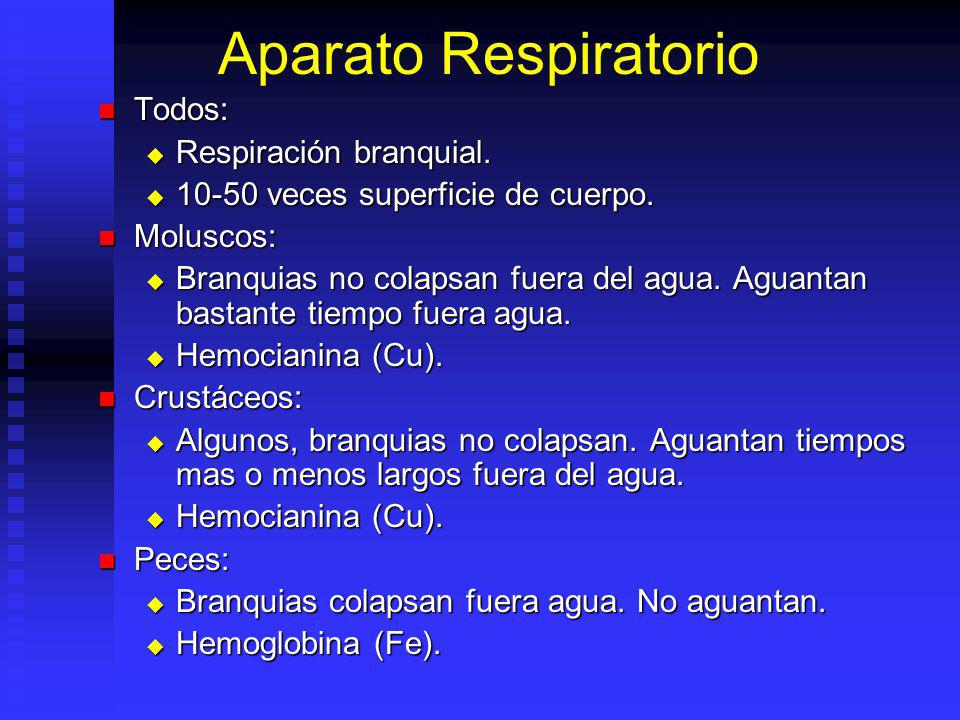 Aparato Respiratorio Todos: Respiración branquial.