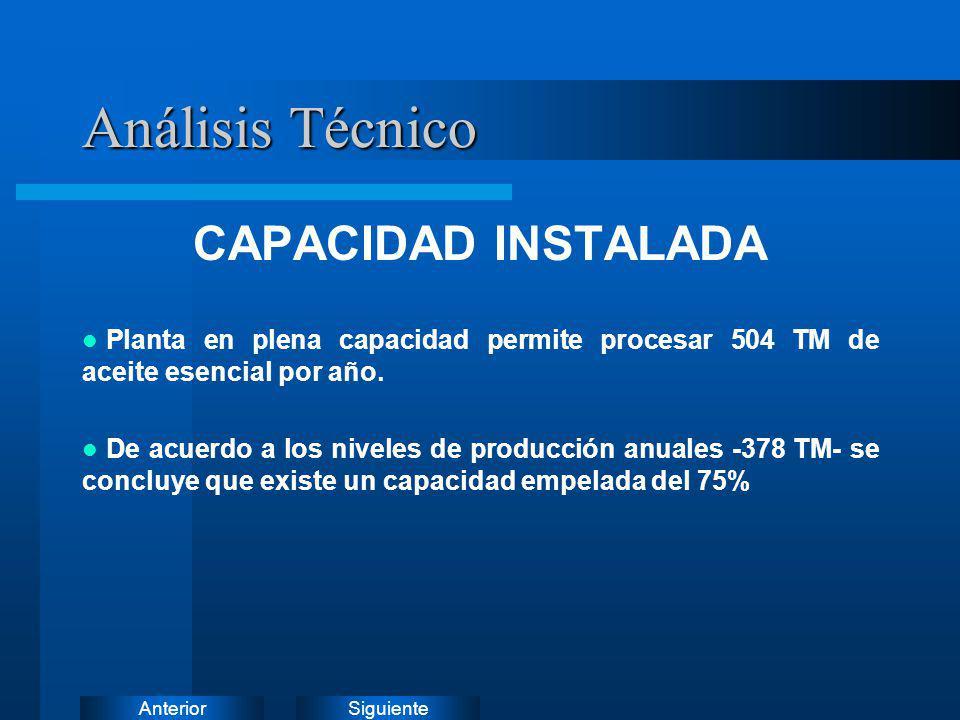 Análisis Técnico CAPACIDAD INSTALADA