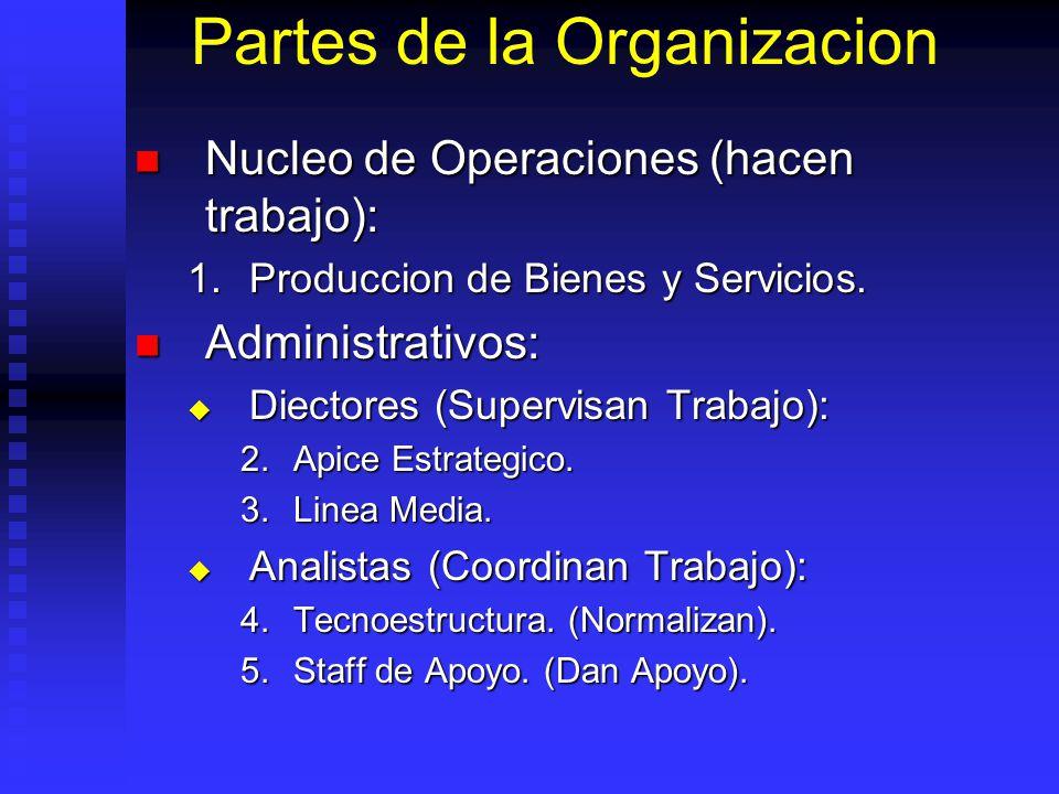 Partes de la Organizacion