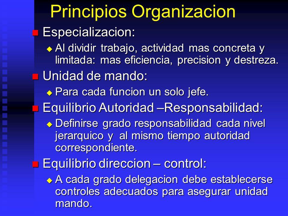 Principios Organizacion