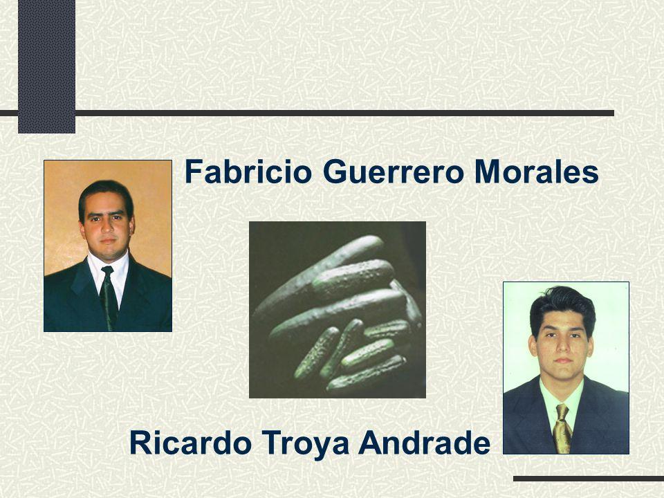 Fabricio Guerrero Morales