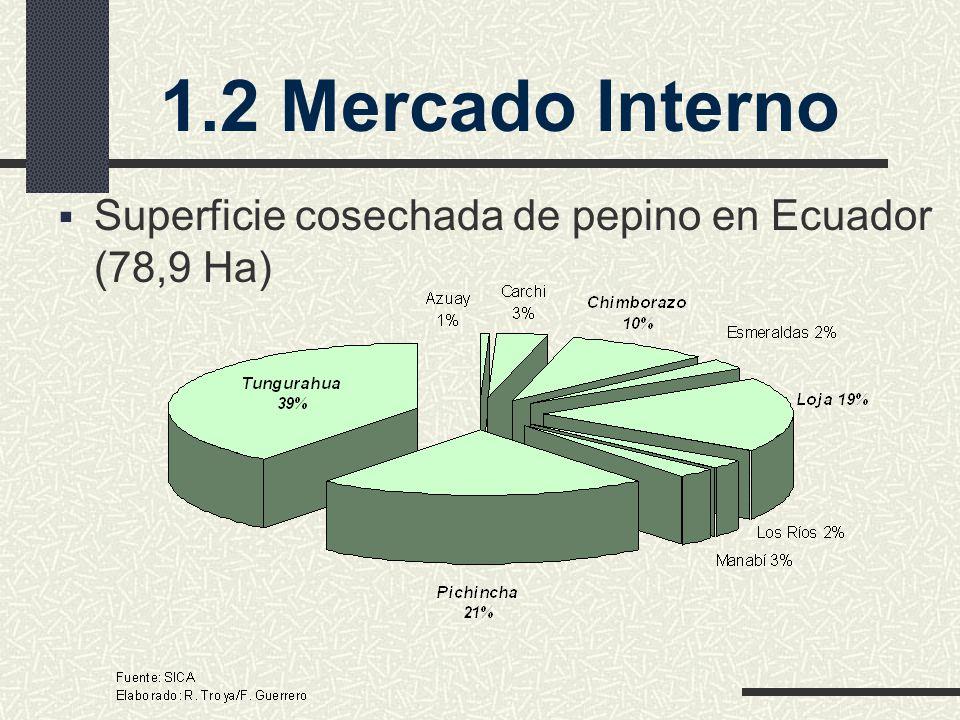 1.2 Mercado Interno Superficie cosechada de pepino en Ecuador (78,9 Ha)