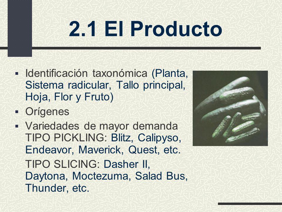 2.1 El Producto Identificación taxonómica (Planta, Sistema radicular, Tallo principal, Hoja, Flor y Fruto)