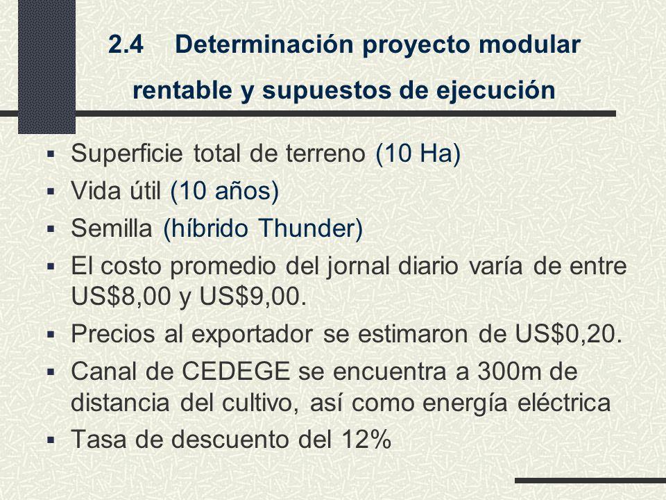 2.4 Determinación proyecto modular rentable y supuestos de ejecución