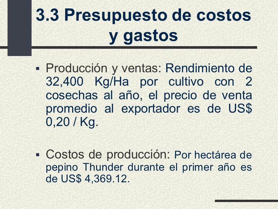 3.3 Presupuesto de costos y gastos
