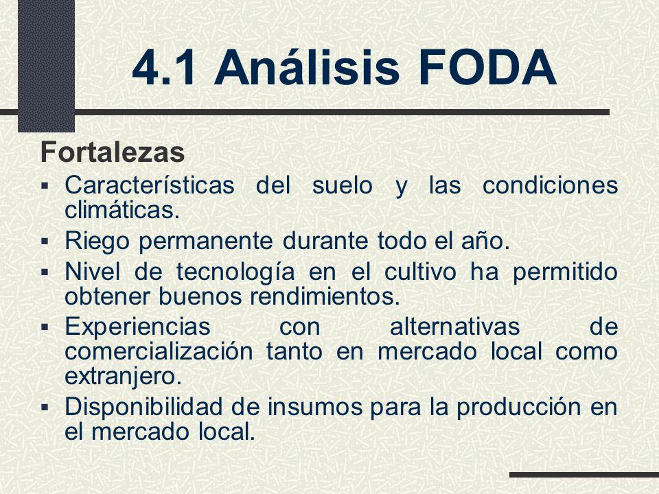 4.1 Análisis FODA Fortalezas