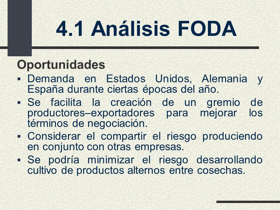 4.1 Análisis FODA Oportunidades
