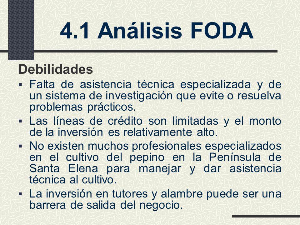 4.1 Análisis FODA Debilidades