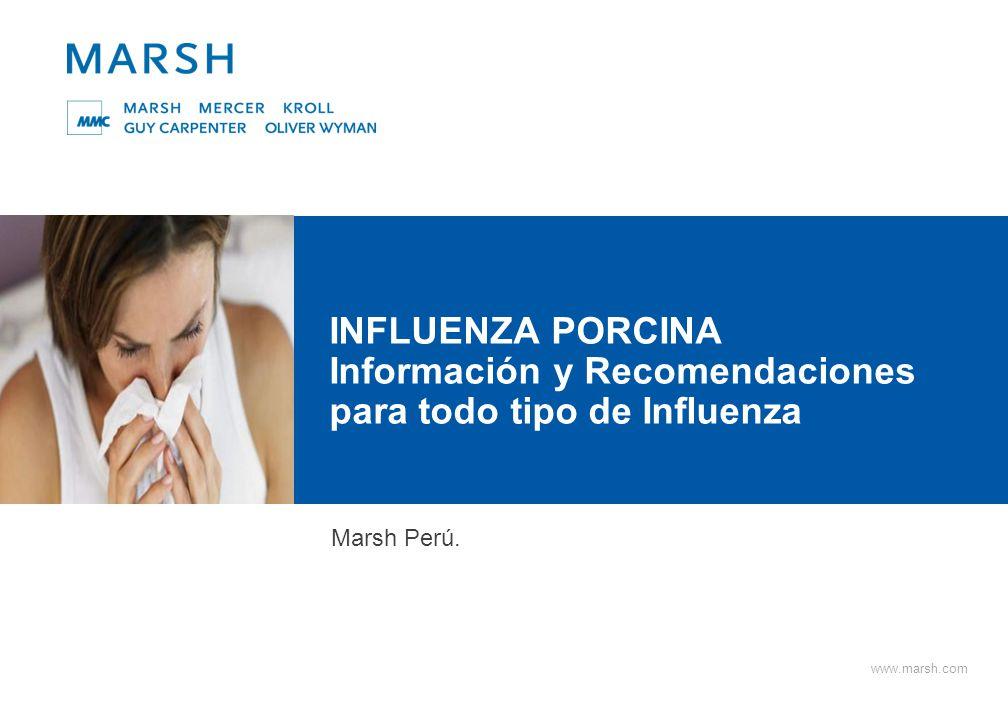 INFLUENZA PORCINA ¿Qué es la influenza porcina