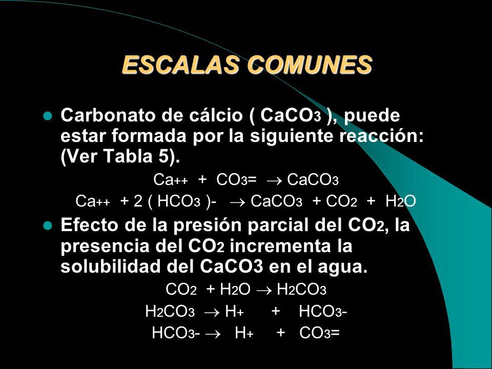 Ca++ + 2 ( HCO3 )-  CaCO3 + CO2 + H2O