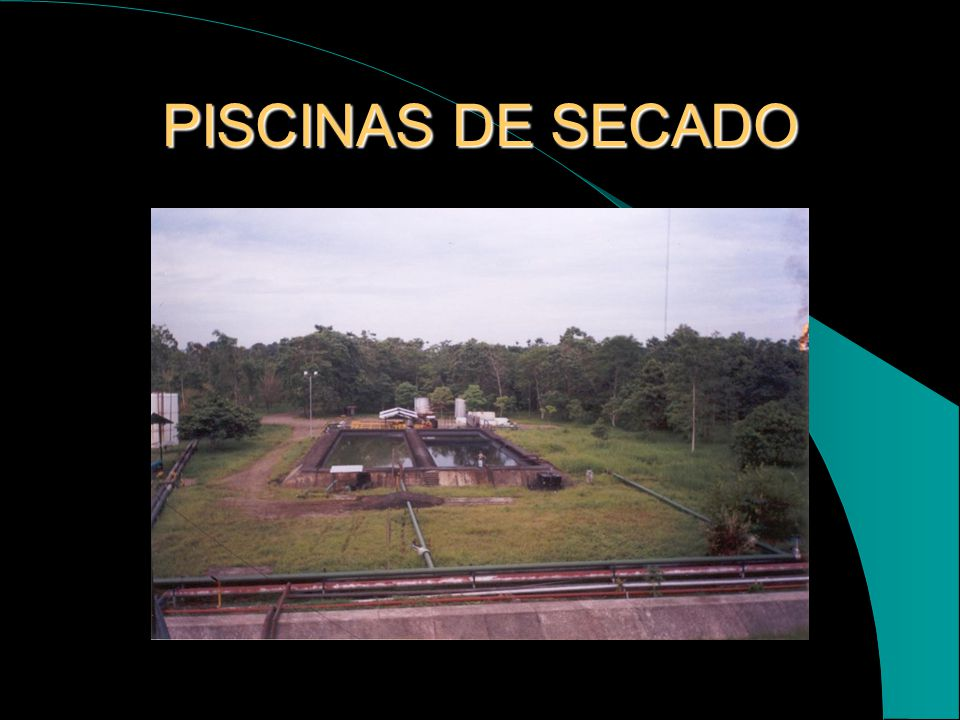 PISCINAS DE SECADO