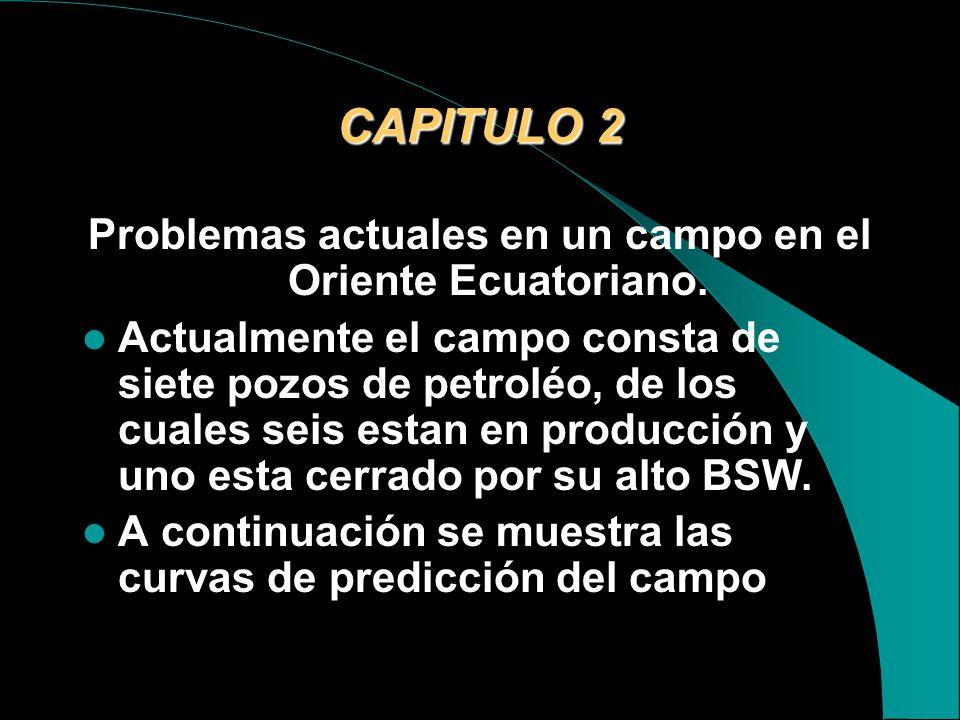 Problemas actuales en un campo en el Oriente Ecuatoriano.