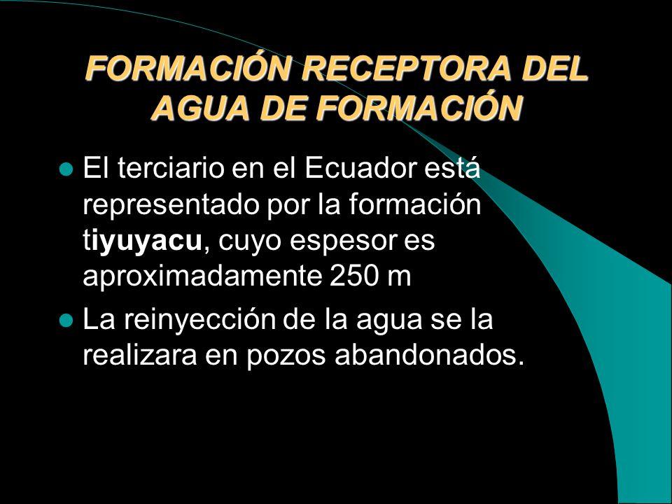 FORMACIÓN RECEPTORA DEL AGUA DE FORMACIÓN