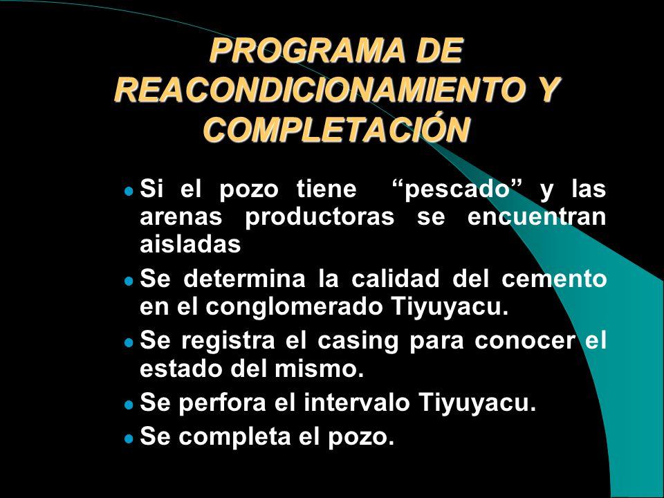 PROGRAMA DE REACONDICIONAMIENTO Y COMPLETACIÓN