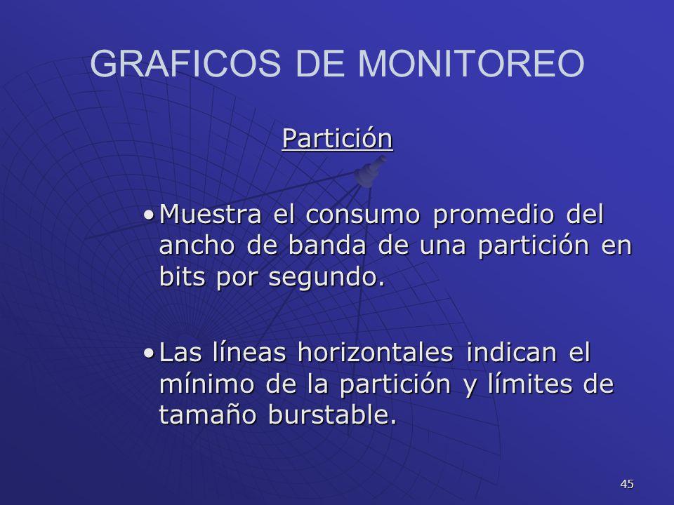 GRAFICOS DE MONITOREO Partición
