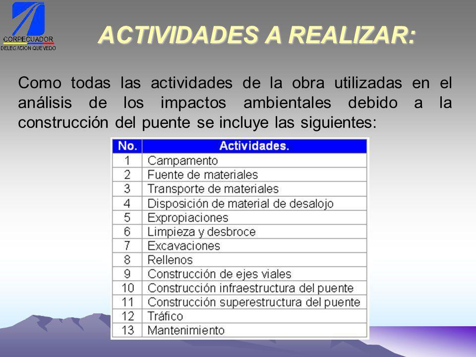 ACTIVIDADES A REALIZAR: