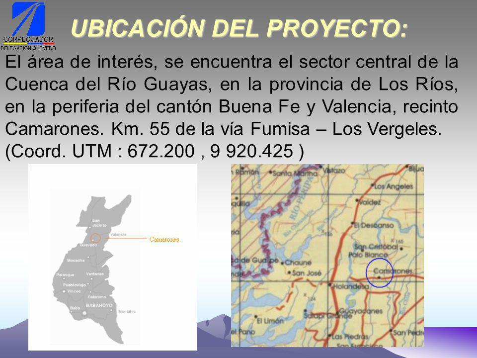 UBICACIÓN DEL PROYECTO: